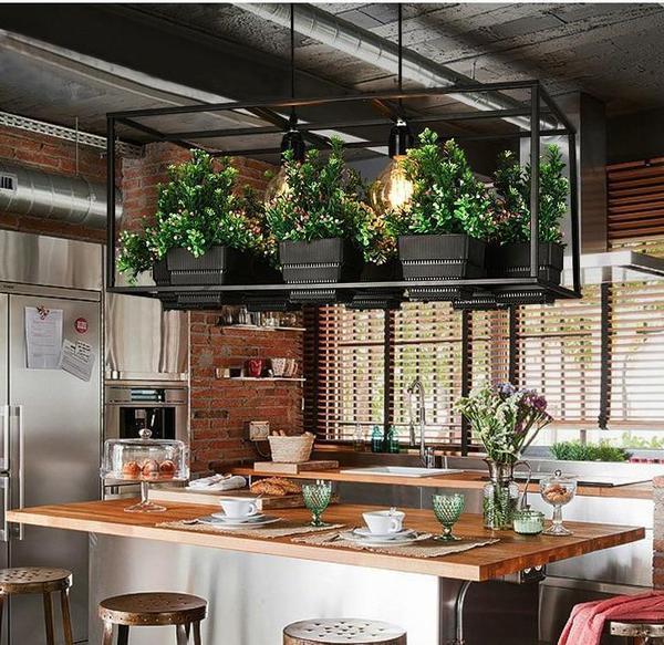 piante appese al soffitto