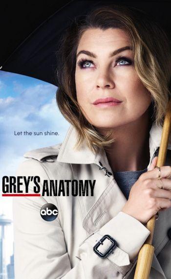 Il poster della dodicesima stagione di Grey's Anatomy