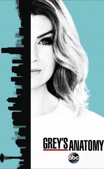 Il poster della tredicesima stagione di Grey's Anatomy